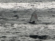 2010-jk-kup-losinja-04