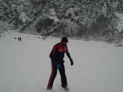 2010-hvkk-021_zim2010