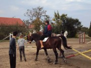 2010-hvkk-slavonija_2010_11