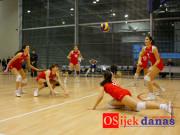 okk-arh2011-11_osijek