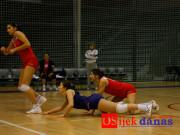 okk-arh2011-25_osijek